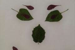 pflanzen-2